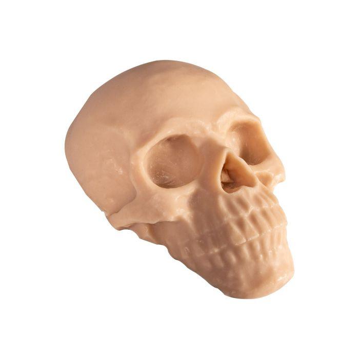 Reelskin - Crâne synthétique tatouable