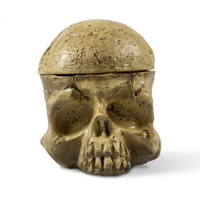 Support Crâne pour Godets à Encres