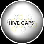 Godets et Gobelets Hives